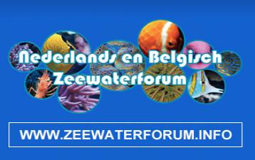 Zeewater Forum