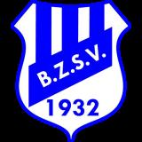 Logo BZSV 1
