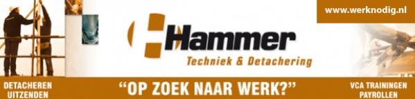Hammer T&D
