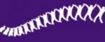 Logo van Rug Netwerk Twente