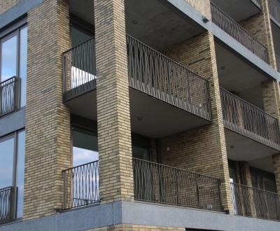 Afbeelding bij 48 Appartementen en 46 woningen Randenbroek