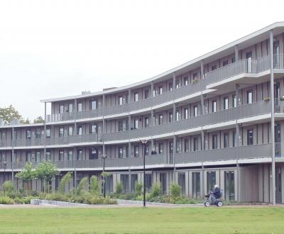 Afbeelding bij Appartementen Bamboehof - Bloemenhof