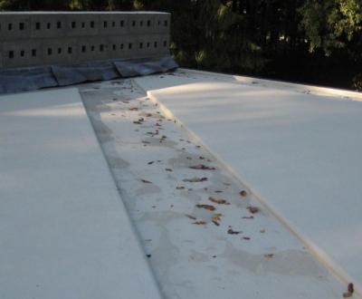 Afbeelding bij Afdichting dak Rietveld paviljoen Otterlo