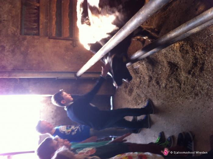 Vergroot de foto Zorgboerderij